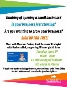 Business Link Small Business Strategist Sessions @ Virtual